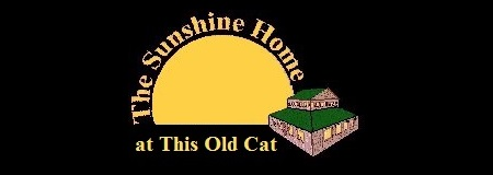 The Sunshine Home @ This Old Cat!